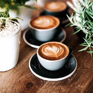 grind espresso beans with burr grinder
